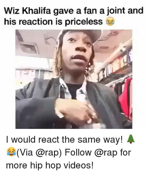 Memes, Rap, and Videos: Wiz Khalifa gave a fan a joint and  his reaction is priceless I would react the same way! 🌲😂(Via @rap) Follow @rap for more hip hop videos!