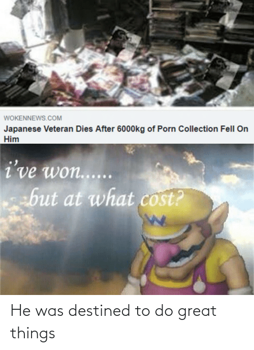 At What: WOKENNEWS.COM  Japanese Veteran Dies After 6000kg of Porn Collection Fell On  Him  i've won.....  but at what cost? He was destined to do great things