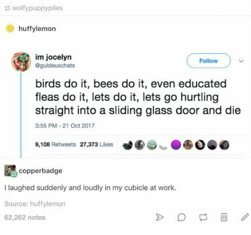 Work, Birds, and Bees: wolfypuppypiles  huffylemon  im jocelyn  @guldeuxchats  Follow  birds do it, bees do it, even educated  fleas do it, lets do it, lets go hurtling  straight into a sliding glass door and die  3:55 PM-21 Oct 2017  9,108 Retweets 27,373 Likes  copperbadge  I laughed suddenly and loudly in my cubicle at work.  Source: huffylemon  62,262 notes
