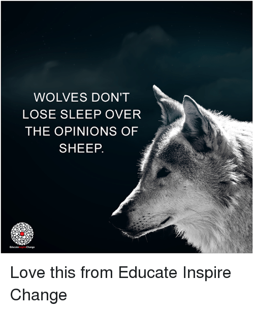 educationals: WOLVES DON'T  LOSE SLEEP OVER  THE OPINIONS OF  SHEEP.  EducateinspireChange Love this from Educate Inspire Change