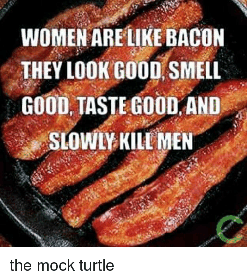 Women Are Like Bacon: WOMEN ARE LIKE BACON  THEY LOOK GOOD SMELL  GOOD TASTE GOOD AND  SLOWLY KILL MEN the mock turtle