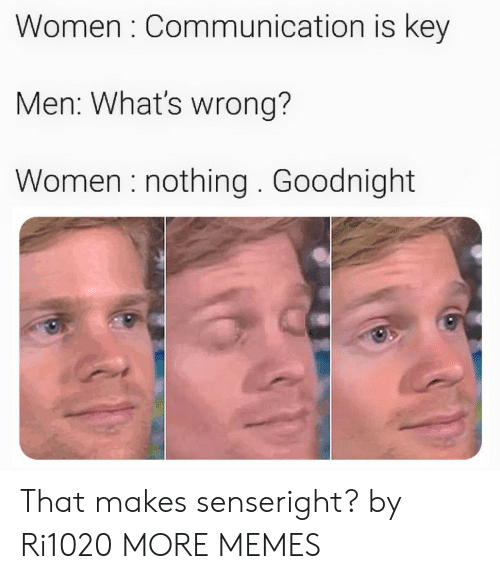Dank, Memes, and Target: Women : Communication is key  Men: What's wrong?  Women nothing. Goodnight That makes senseright? by Ri1020 MORE MEMES