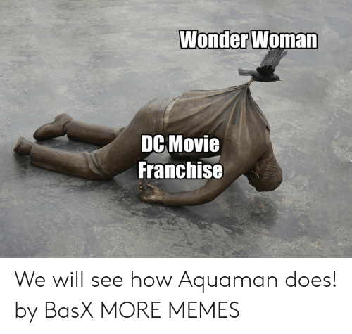 Dank, Memes, and Target: Wonder Woman  DC Movie  Franchise We will see how Aquaman does! by BasX MORE MEMES