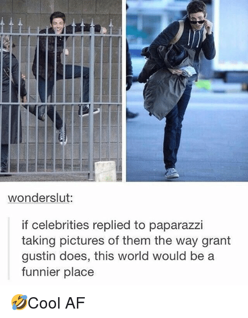 Af, Memes, and Pictures: wonderslut:  f celebrities replied to paparazzI  taking pictures of them the way grant  gustin does, this world would be a  funnier place 🤣Cool AF