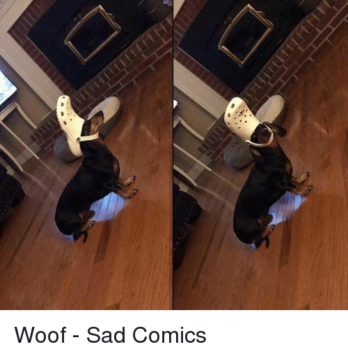 Dank, Sad, and Sad Comics: Woof - Sad Comics