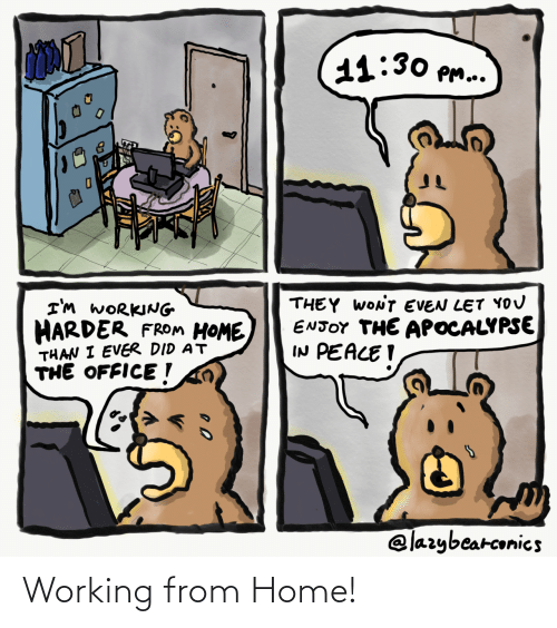 working: Working from Home!