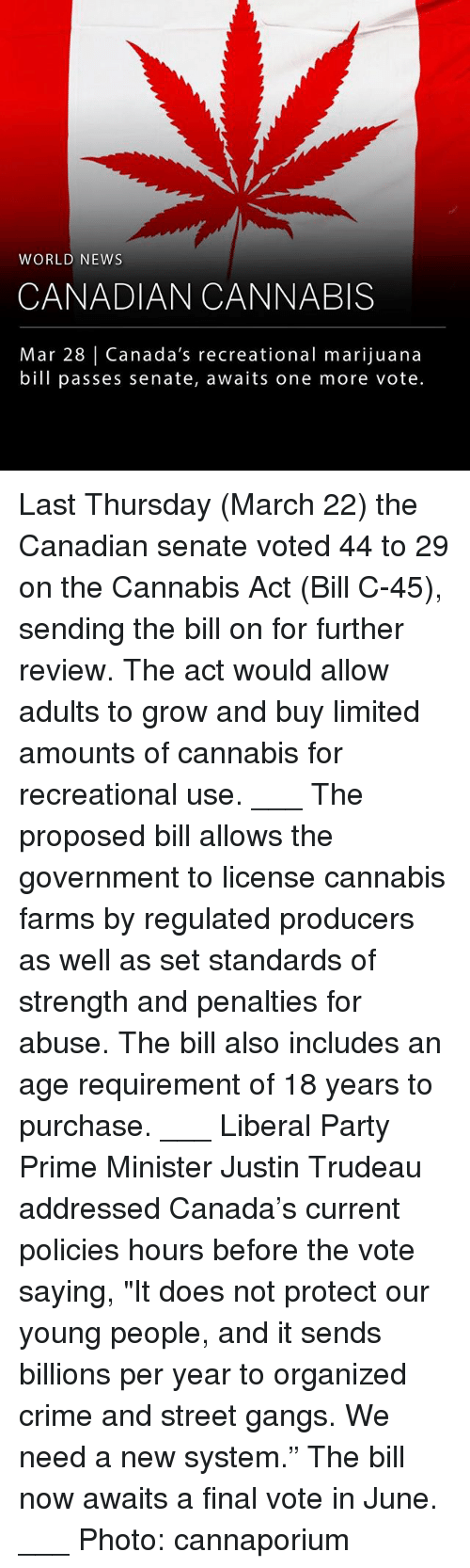 """Crime, Memes, and News: WORLD NEWS  CANADIAN CANNABIS  Mar 28   Canada's recreational marijuana  bill passes senate, awaits one more vote Last Thursday (March 22) the Canadian senate voted 44 to 29 on the Cannabis Act (Bill C-45), sending the bill on for further review. The act would allow adults to grow and buy limited amounts of cannabis for recreational use. ___ The proposed bill allows the government to license cannabis farms by regulated producers as well as set standards of strength and penalties for abuse. The bill also includes an age requirement of 18 years to purchase. ___ Liberal Party Prime Minister Justin Trudeau addressed Canada's current policies hours before the vote saying, """"It does not protect our young people, and it sends billions per year to organized crime and street gangs. We need a new system."""" The bill now awaits a final vote in June. ___ Photo: cannaporium"""