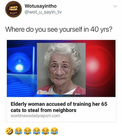 Cats, Neighbors, and Girl Memes: Wotusayintho  @wot_u_sayin_tv  wus  Where do you see yourself in 40 yrs?  Elderly woman accused of training her 65  cats to steal from neighbors  worldnewsdailyreport.com 🤣😂😂😂😂😂