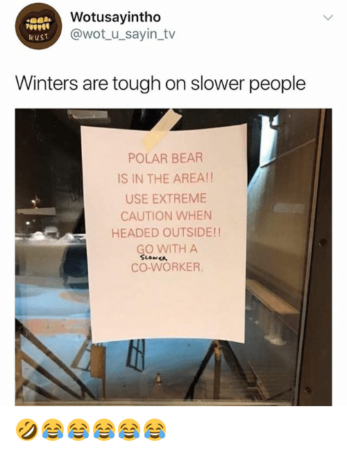 Bear, Girl Memes, and Tough: Wotusayintho  @wot_u_sayin_tv  wusT  Winters are tough on slower people  POLAR BEAR  IS IN THE AREA!!  USE EXTREME  CAUTION WHEN  HEADED OUTSIDE!!  GO WITH A  CO-WORKER. 🤣😂😂😂😂😂