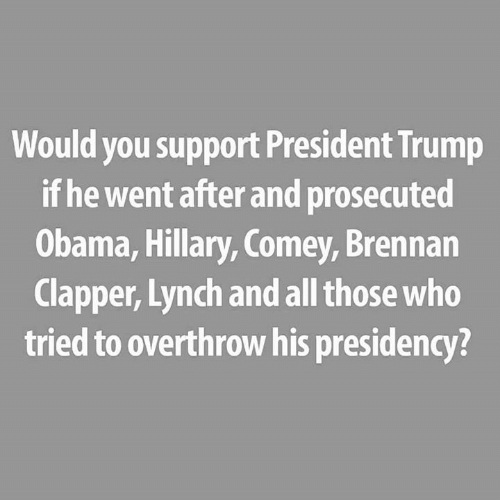 President Trump: Would you support President Trump  if he went after and prosecuted  Obama, Hillary, Comey, Brennan  Clapper, Lynch and all those who  tried to overthrow his presidency?
