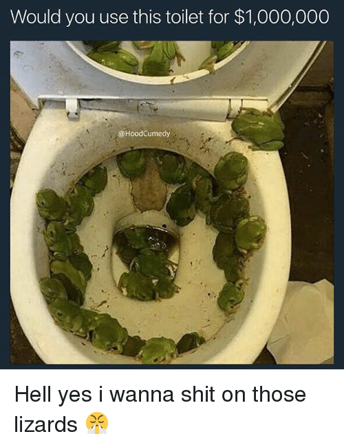 Shit, Relatable, and Hell: Would you use this toilet for $1,000,000  @HoodCumedy Hell yes i wanna shit on those lizards 😤
