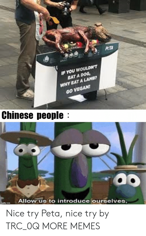 lamb: WOULDN'T  EAT A DOG  YEAT A LAMB  IF YOU  WHY  GO VEGAN  Chinese people:  Allow us to introduce ourselves Nice try Peta, nice try by TRC_0Q MORE MEMES