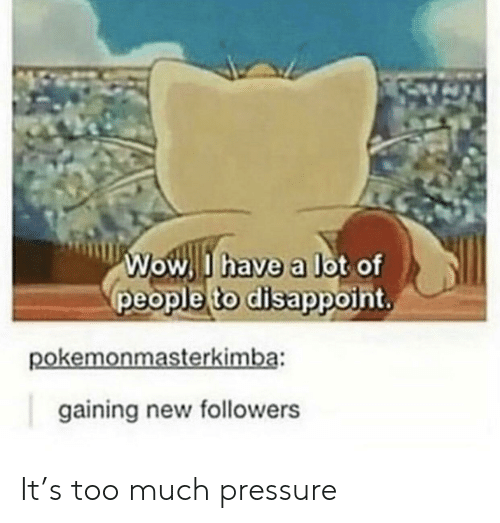 disappoint: Wow I have a lot of  people to disappoint,  pokemonmasterkimba:  gaining new followers It's too much pressure