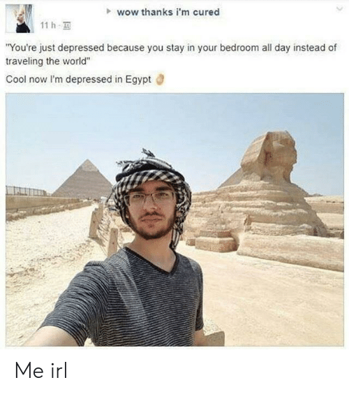 "Wow, Cool, and World: wow thanks i'm cured  11 h  You're just depressed because you stay in your bedroom all day instead of  traveling the world""  Cool now lI'm depressed in Egypt d Me irl"