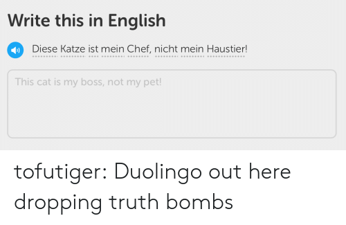 Target, Tumblr, and Blog: Write this in English  Diese Katze ist mein Chef, nicht mein Haustier!  This cat is my boss, not my pet! tofutiger: Duolingo out here dropping truth bombs