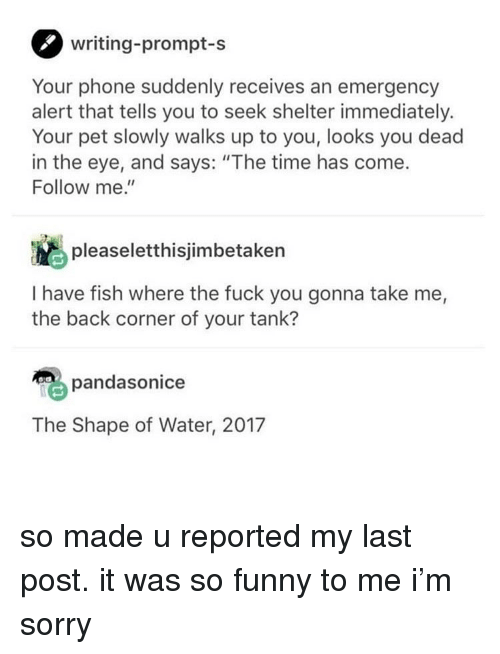 """Fuck You, Funny, and Phone: writing-prompt-s  Your phone suddenly receives an emergency  alert that tells you to seek shelter immediately.  Your pet slowly walks up to you, looks you dead  in the eye, and says: """"The time has come.  Follow me.""""  pleaseletthisjimbetaken  I have fish where the fuck you gonna take me,  the back corner of your tank?  pandasonice  The Shape of Water, 2017 so made u reported my last post. it was so funny to me i'm sorry"""