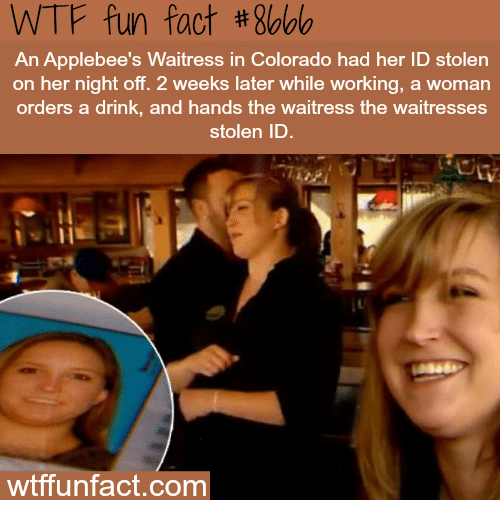 Wtf, Colorado, and Bees: WTF fun fact #8bbb  bee's Waitress in Colorado had her ID stolen  An  on her night off. 2 weeks later while working, a woman  orders a drink, and hands the waitress the waitresses  stolen ID  wtffunfact.com