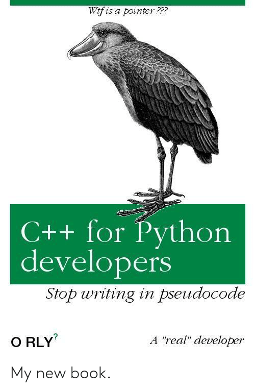 """writing: Wtf is a pointcr???  C++ for Python  developers  Stop writing in pseudocode  A """"real"""" developer  O RLY My new book."""