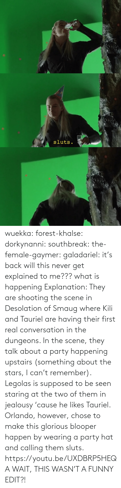 calling: wuekka: forest-khalse:   dorkynanni:  southbreak:   the-female-gaymer:   galadariel:  it's back   will this never get explained to me???    what is happening    Explanation:  They are shooting the scene in Desolation of Smaug where Kili and Tauriel are having their first real conversation in the dungeons.  In the scene, they talk about a party happening upstairs (something about the stars, I can't remember). Legolas is supposed to be seen staring at the two of them in jealousy 'cause he likes Tauriel.  Orlando, however, chose to make this glorious blooper happen by wearing a party hat and calling them sluts.    https://youtu.be/UXDBRP5HEQA    WAIT, THIS WASN'T A FUNNY EDIT?!