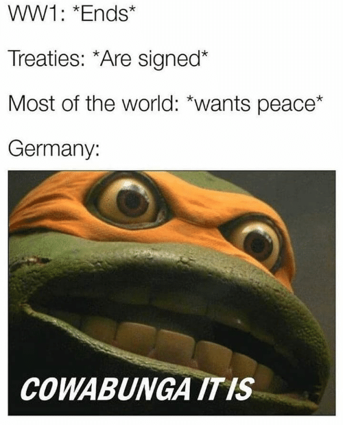 ww1: WW1: *Ends*  Treaties: *Are signed*  Most of the world: *wants peace*  Germany:  COWABUNGA ITIS