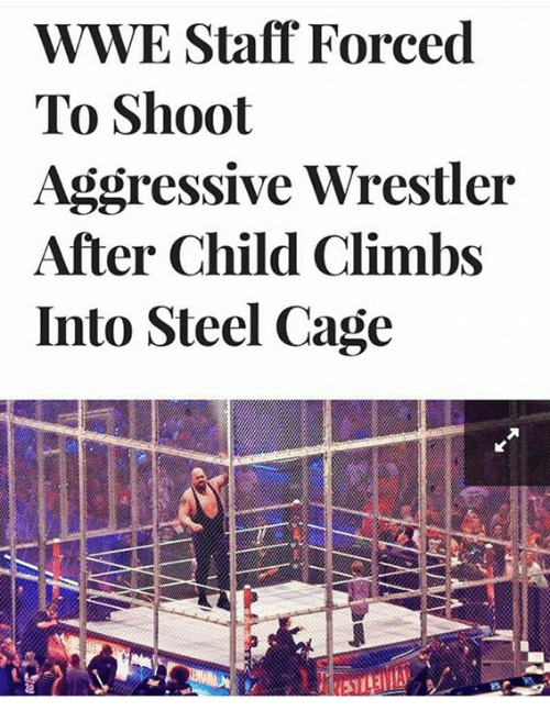 wrestlers: WWE Staff Forced  To Shoot  Aggressive Wrestler  After Child Climbs  Into Steel Cage