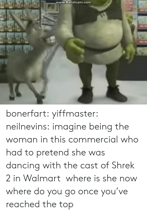 Where Is She: www.Bandicam.comm bonerfart: yiffmaster:  neilnevins:  imagine being the woman in this commercial who had to pretend she was dancing with the cast of Shrek 2 in Walmart  where is she now  where do you go once you've reached the top