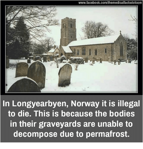 decomposer: www.facebook.com/themedicalfactsdotcom  In Longyearbyen, Norway it is illegal  to die. This is because the bodies  in their graveyards are unable to  decompose due to permafrost.