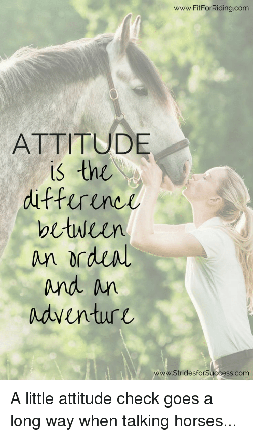 Horses, Attitude, and Com: www.FitForRiding.com  ATTITUDE  is the  diffirunci  be wien  and n  Adventure  www.StridesforSuccess.com A little attitude check goes a long way when talking horses...