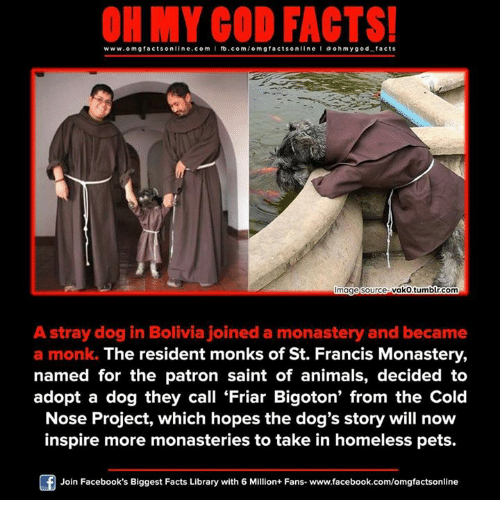 Patrone: www.omg facts online.com I fb.com  m g facts online I a oh my god facts  vako tumblr.com  mage Source  A stray dog in Bolivia joined a monastery and became  a monk. The resident monks of St. Francis Monastery,  named for the patron saint of animals, decided to  adopt a dog they call Friar Bigoton' from the Cold  Nose Project, which hopes the dog's story will now  inspire more monasteries to take in homeless pets.  Join Facebook's Biggest Facts Library with 6 Million+ Fans- www.facebook.com/omgfactsonline
