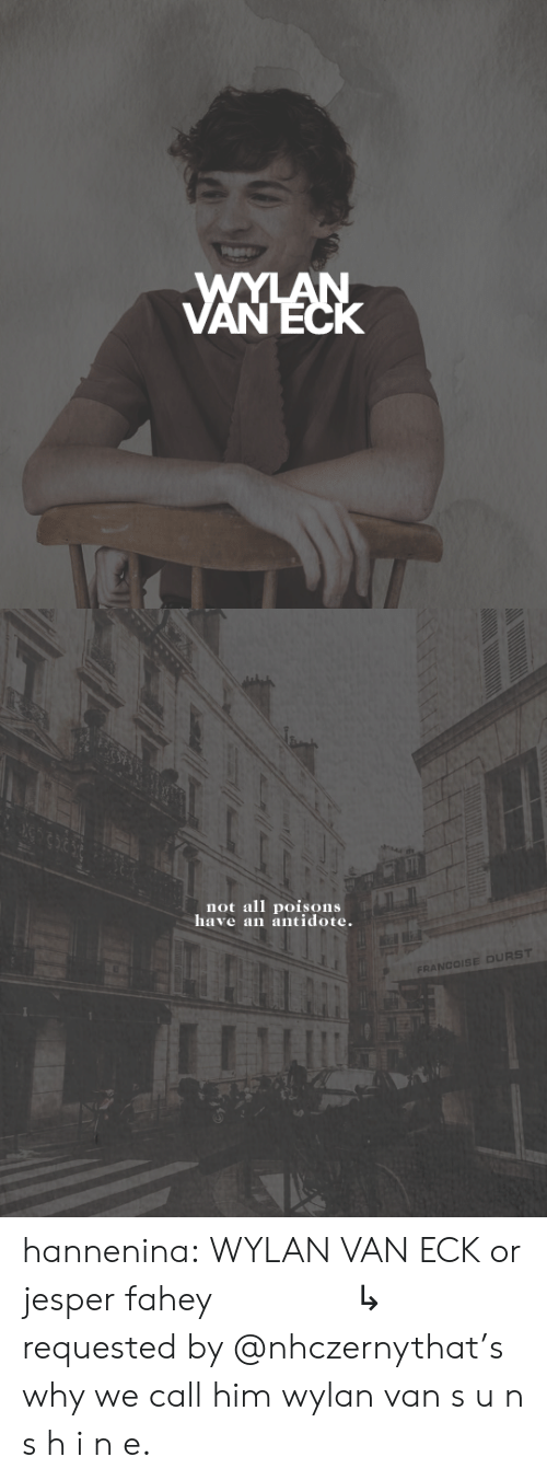 Antidote, Target, and Tumblr: WYLAN  VANECK   not all poisons  have an antidote.  FRANCOISE DURST hannenina:  WYLAN VAN ECK or jesper fahey       ↳   requested by @nhczernythat's why we call him wylan van s u n s h i n e.