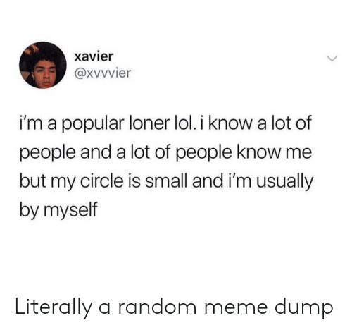 xavier: xavier  i'm a popular loner lol. i know a lot of  people and a lot of people know me  but my circle is small and i'm usually  by myself Literally a random meme dump