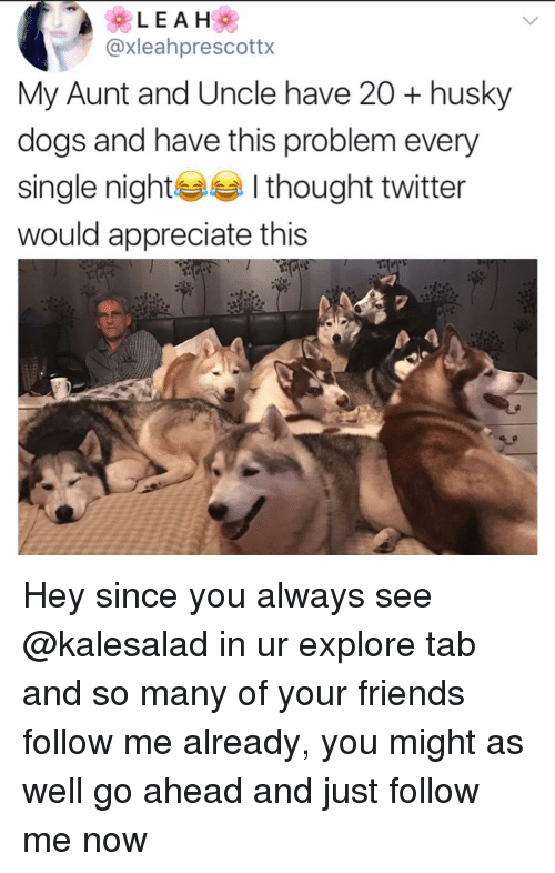 every single night: @xleahprescottx  My Aunt and Uncle have 20 + husky  dogs and have this problem every  single night I thought twitter  would appreciate this Hey since you always see @kalesalad in ur explore tab and so many of your friends follow me already, you might as well go ahead and just follow me now