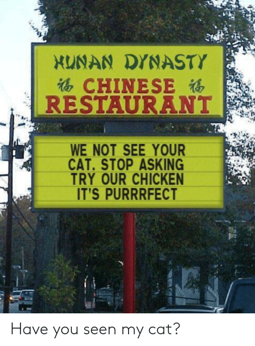 Chicken, Chinese, and Restaurant: XUNAN DYNASTY  CHINESE  RESTAURANT  WE NOT SEE YOUR  CAT.STOP ASKING  TRY OUR CHICKEN  IT'S PURRRFECT Have you seen my cat?