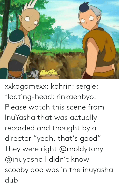 "Head, Scooby Doo, and Target: xxkagomexx:  kohrin: sergle:  floating-head:  rinkaenbyo:  Please watch this scene from InuYasha that was actually recorded and thought by a director ""yeah, that's good""  They were right  @moldytony   @inuyqsha    I didn't know scooby doo was in the inuyasha dub"