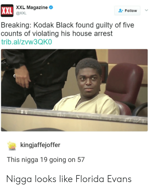 Foundly: XXL  XXL Magazine  @XXL  L-Follow  Breaking: Kodak Black found guilty of five  counts of violating his house arrest  trib.al/zVw3QKO  kingjaffejoffer  This nigga 19 going on 57 Nigga looks like Florida Evans