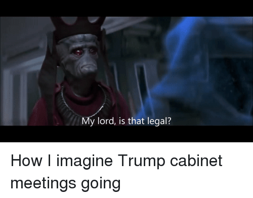 "Ÿ "": y lord, is that legal? How I imagine Trump cabinet meetings going"