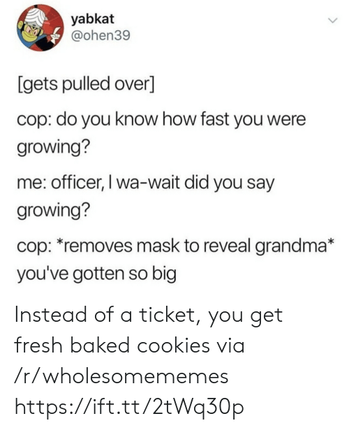 Baked, Cookies, and Fresh: yabkat  @ohen39  [gets pulled over]  cop: do you know how fast you were  growing?  me: officer, I wa-wait did you say  growing?  cop: *removes mask to reveal grandma*  you've gotten so big Instead of a ticket, you get fresh baked cookies via /r/wholesomememes https://ift.tt/2tWq30p