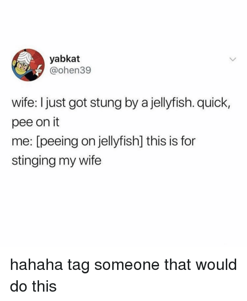 Tag Someone, Girl Memes, and Wife: yabkat  @ohen39  wife: I just got stung by a jellyfish. quick,  pee on it  me: [peeing on jellyfish] this is for  stinging my wife hahaha tag someone that would do this