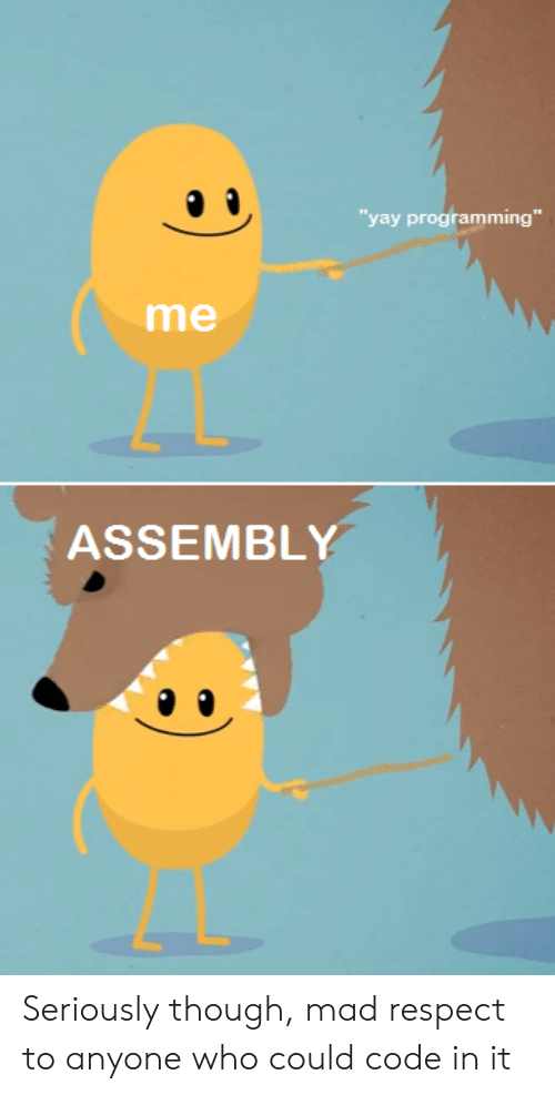 "Respect, Mad, and Programming: yay programming""  me  ASSEMBLY Seriously though, mad respect to anyone who could code in it"