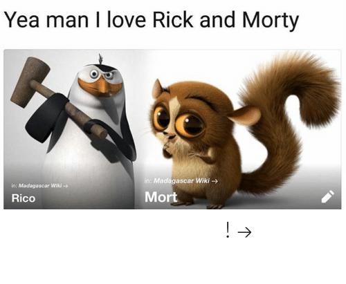 Rick and Morty: Yea man I love Rick and Morty  in: Madagascar Wiki  in: Madagascar Wiki-  Rico  Mort 𝘍𝘰𝘭𝘭𝘰𝘸 𝘮𝘺 𝘗𝘪𝘯𝘵𝘦𝘳𝘦𝘴𝘵! → 𝘤𝘩𝘦𝘳𝘳𝘺𝘩𝘢𝘪𝘳𝘦𝘥