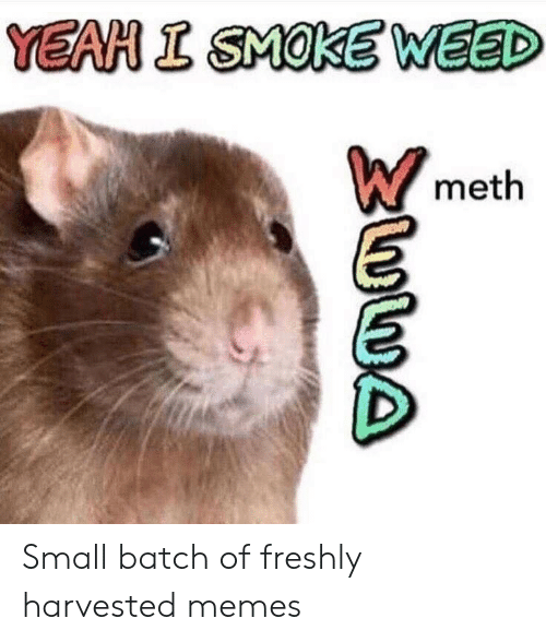 Memes, Weed, and Yeah: YEAH I SMOKE WEED  meth Small batch of freshly harvested memes