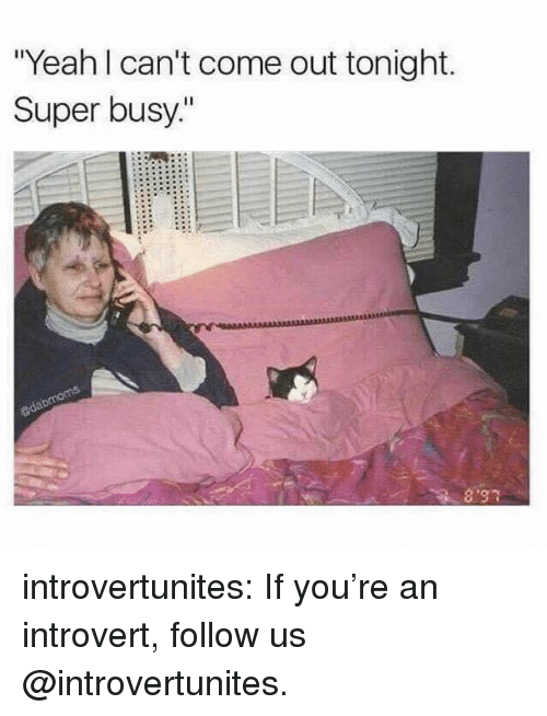 "Introvert, Target, and Tumblr: ""Yeah l can't come out tonight.  Super busy"" introvertunites:  If you're an introvert, follow us @introvertunites."