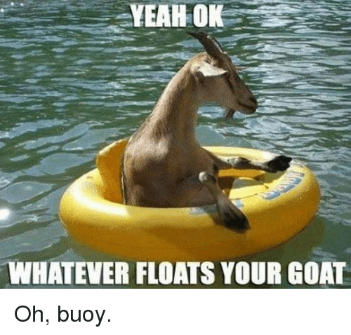 Float Your Goat