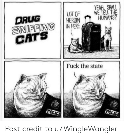 Shall We: YEAH SHALL  WE TELL THE  HUMANS?  LOT OF  HEROIN  IN HERE  DRUG  SNIFFING  CATS  Fuck the state  FOLICE  FOLICE Post credit to u/WingleWangler