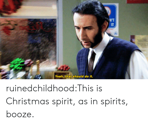 Christmas, Target, and Tumblr: Yeah that should do it ruinedchildhood:This is Christmas spirit, as in spirits, booze.