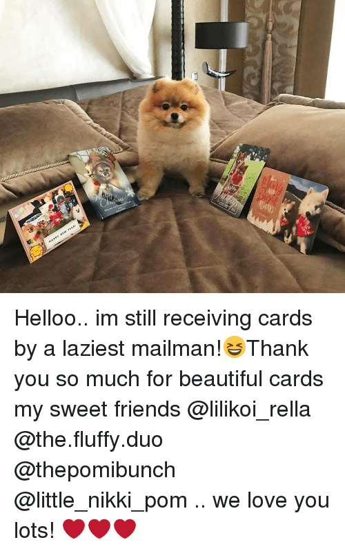 Fluffiness: YEAR!  N  HAPPY Helloo.. im still receiving cards by a laziest mailman!😆Thank you so much for beautiful cards my sweet friends @lilikoi_rella @the.fluffy.duo @thepomibunch @little_nikki_pom .. we love you lots! ❤️❤️❤️