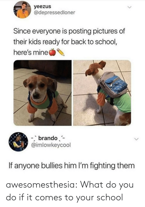 Bullies: yeezus  @depressedloner  Since everyone is posting pictures of  their kids ready for back to school,  here's mine  -, brando-  @imlowkeycool  If anyone bullies him l'm fighting them awesomesthesia:  What do you do if it comes to your school