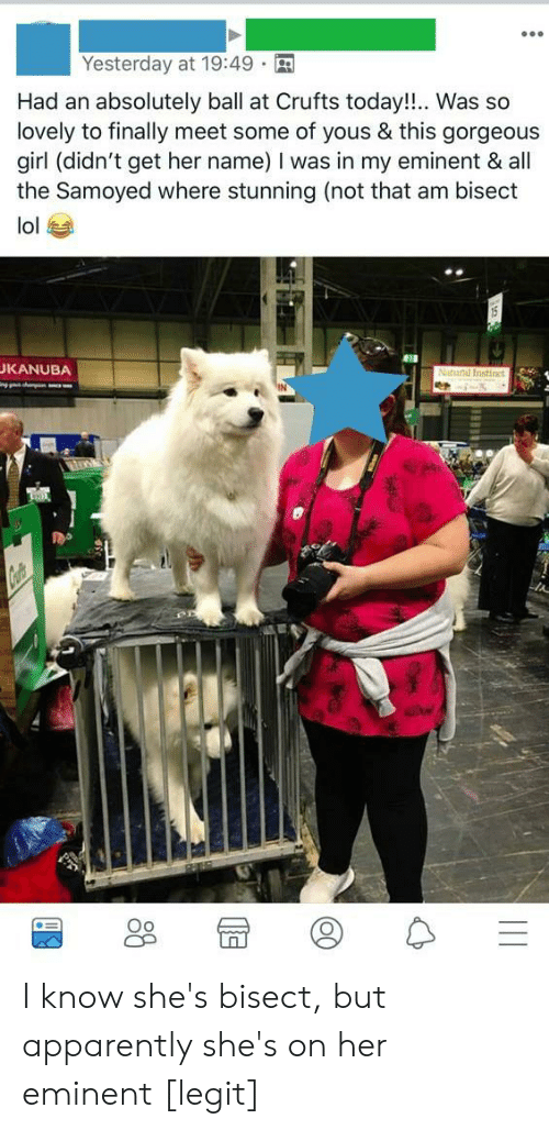 Apparently, Lol, and Girl: Yesterday at 19:49  Had an absolutely ball at Crufts today!!.. Was so  lovely to finally meet some of yous & this gorgeou:s  girl (didn't get her name) I was in my eminent & all  the Samoyed where stunning (not that am bisect  lol  KANUBA  Oo I know she's bisect, but apparently she's on her eminent [legit]