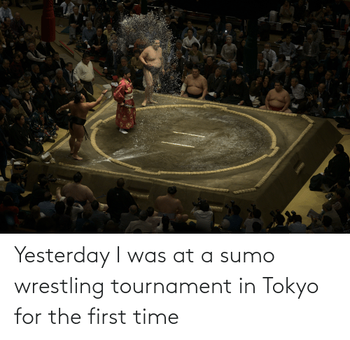 sumo: Yesterday I was at a sumo wrestling tournament in Tokyo for the first time
