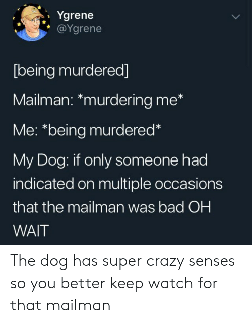 Dog Has: Ygrene  @Ygrene  [being murdered]  Mailman: *murdering me*  Me: *being murdered*  My Dog: if only someone had  indicated on multiple occasions  that the mailman was bad OH  WAIT The dog has super crazy senses so you better keep watch for that mailman